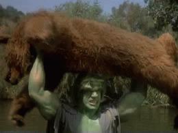 hulk_bear