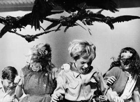 The_Birds_(The_Birds)