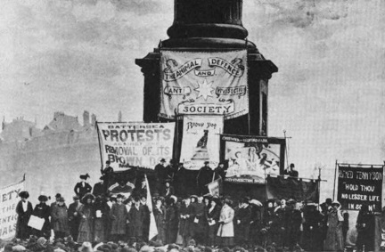 Protesting the statue's removal